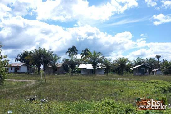 파푸아의 생활